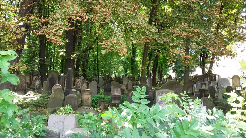A pre-WWII cemetary that I found in the old Jewish district near downtown Krakow...
