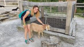 Katya at the petting zoo at the Ark Encounter